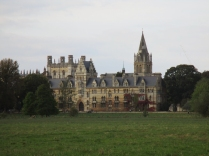 The Venician buildings from across the Meadow